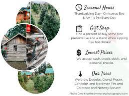 christmas tree prices fullner christmas tree farm u cut pre cut trees and barn gift