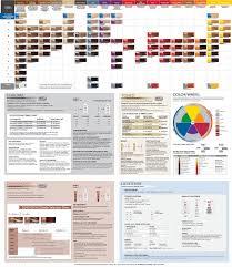 Hair Color Wheel Chart Aloxxi Chroma Haircolor Ogden Beauty Supply
