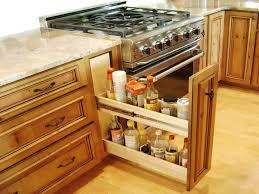 Hickory Wood Red Lasalle Door Kitchen Cabinet Organization Ideas