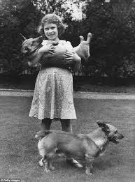 Queen Corgis The Queen Says She Is U0027too Old U0027 For Any New Corgis Daily Mail Online