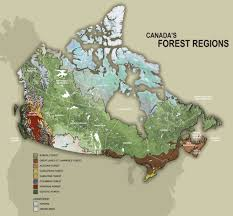 Map Of Canada Provinces Canada U0027s Forests Sustainability And Management Ccfm