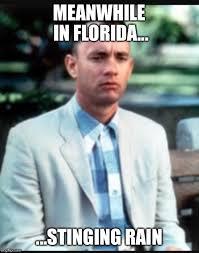 Florida Rain Meme - stinging rain imgflip