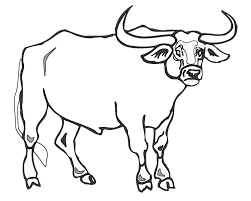 printable bull mask bull drawing for kids at getdrawings com free for personal use