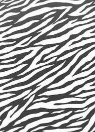 Zebra Outdoor Rug Floors U0026 Rugs Zebra Animal Pattren 5x7 Rugs For Contemporary