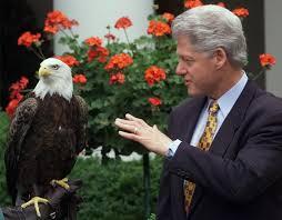 bill clinton u0027s pentagon paid psychics to gather intelligence via