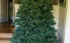 10 best artificial trees 2016 best trees