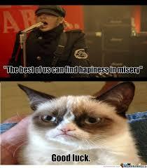 Good Luck Cat Meme - good luck fall out boy by lumemesta meme center