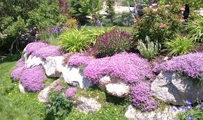 Landscape Rock Utah by Fertilizing Chris Jensen Landscaping In Salt Lake City And Utah