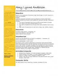 Computer Skills Resume Example by Vet Assistant Essay Veterinarian Resume Objective Veterinary