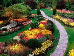 giardini rocciosi in ombra cespugli da giardino fioriti sempreverdi i nostri consigli
