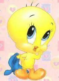 tweety bird tweety bird u2022 u2022 posts bird