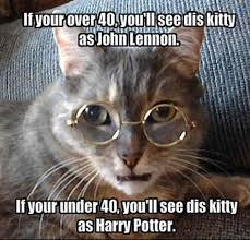 Cat Meme Ladies - cat archives page 969 of 983 cat planet cat planet