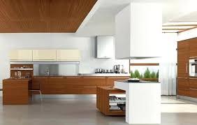 Modern Cherry Kitchen Cabinets Modern Wood Cabinet Modern Kitchen Cabinets Interesting Modern