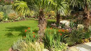 tropical garden design in uk u2013 izvipi com