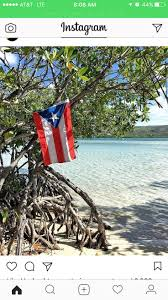 Puerto Rico Beaches Map by 301 Best Puerto Rico Images On Pinterest San Juan Caribbean And