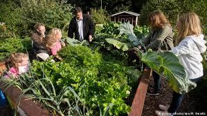Family Garden - a brief guide to german garden colonies meet the germans dw