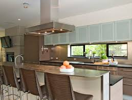Frosted Glass For Kitchen Cabinet Doors Novel Glass Kitchen Cabinet Doors Contemporary Kitchen Cabinets