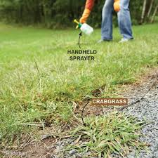 tips for a weed free yard family handyman