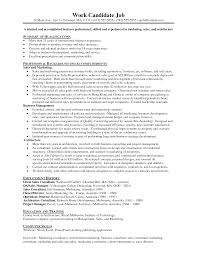 Resume Samples With Summary by Car Sales Resume Example Commercial Sales Manager Sample Resume