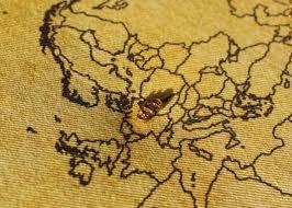 map tacks bicycle map pins map tacks butterpot designs