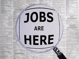 Resume Sample Quantity Surveyor by Quantify Surveyor Resume Examples And Templates