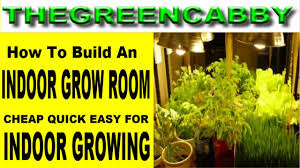 indoor growroom cheap quick easy how to build a grow room for