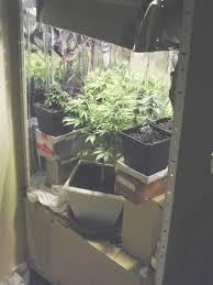 chambre de culture complete cannabis placard culture cannabis pas cher great pas raliser mon placard