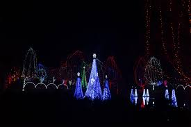 Columbus Zoo Lights by Lifestyle Bad Beauty
