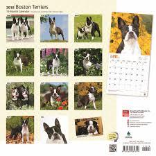 Boston Terrier Flag Boston Terrier Calendar 2018 Calendar Club Uk