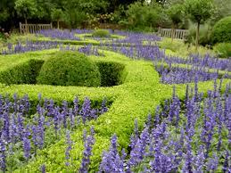 Botanical Garden In Bronx by Botanical Garden N Yedwa