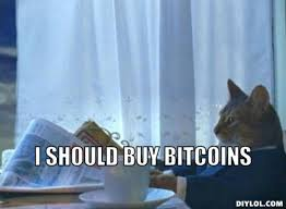 Cat Memes Generator - top 10 bitcoin memes blockchain aliens