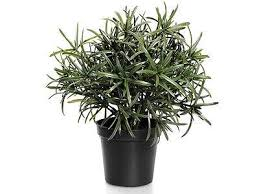 artificial potted herb plants rosemary oregano marjoram