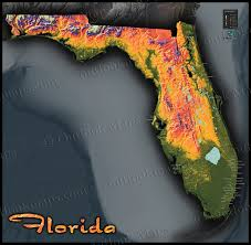 Florida Map Image by Florida Topography Map Colorful Natural Physical Landscape