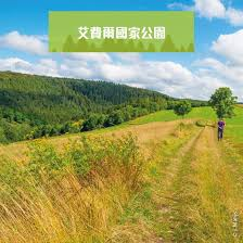 canap駸 relaxation canap駸anglais 100 images 三益公所朱沛國堂舉行雞年春宴bostonese