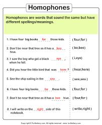 identify the homophone worksheet turtle diary