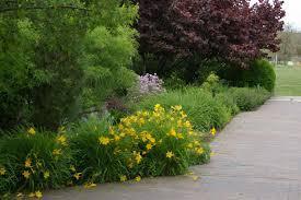 Idaho Botanical Gardens May Blooms At The Idaho Botanical Garden