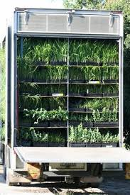 plant delivery contact plant delivery service qld south east queensland