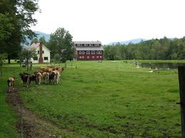 vermont farmhouse fielder farm vermont u2013 vermont country home rental vacation