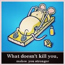Can Challenge Kill You Joey Episode 67 What Doesn T Kill You Makes You Stronger