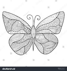 detailed ornamental sketch butterflyhand drawn zentangle stock
