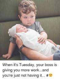 Tuesday Funny Memes - when it s tuesday your boss is giving you more workand you re just