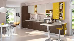 amazing of room apartment european kitchen design designs 1152