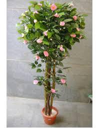 Bougainvillea Topiary - artificial yellow bougainvillea topiary plants online in india