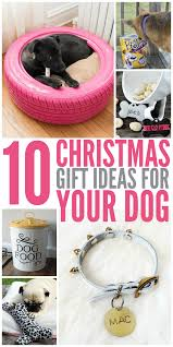 10 christmas gift ideas for your dog glue sticks and gumdrops