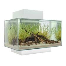 Fluval Edge Aquascape Fluval Edge Led Aquarium Fish Tank 23l 46l 23 46 Litre Gloss White