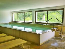 Small Indoor Pools Indoor Therapy Pool Ideas