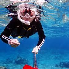 Alaska Snorkeling images Best bermuda snorkel adventure jpg