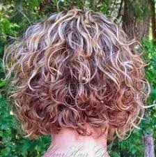 diva curl hairstyling techniques 17 best images about deva curl on pinterest natural curly hair