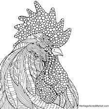 rooster coloring page u2013 heritage acres market llc