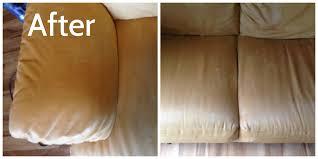 Upholstery Hendersonville Nc Upholstery Cleaning Archives Five Step Carpet Care